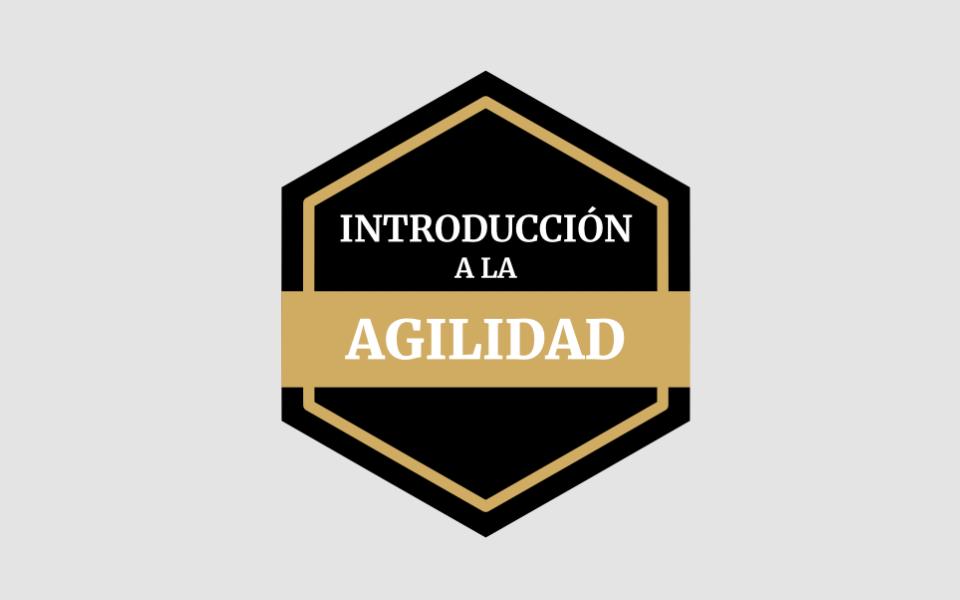 Cursos y Programas de Desarrollo Profesional con Agilidad y Liderazgo Ágil | Aprende a ser un Líder Ágil